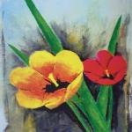 2 offene Tulpen